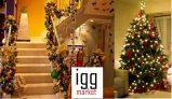 Adornos Navideños – Consejos para decorar tu casa en navidad